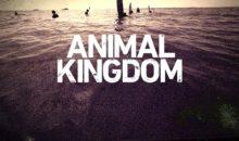 When Does Animal Kingdom Season 2 Start? Premiere Date (Renewed)