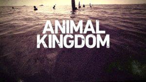 When Does Animal Kingdom Season 2 Start? Premiere Date