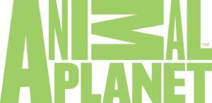animal planet tv show premiere dates