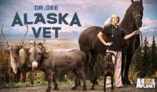 When Does Dr. Dee: Alaska Vet Season 3 Start? Premiere Date
