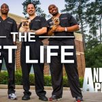 When Does The Vet Life Season 4 Start? Animal Planet Release Date