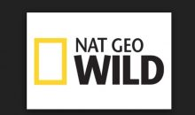 When is Animal ER Live Release Date on Nat Geo WILD? (Premiere Date)