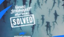 When is Nature's Strangest Mysteries: Solved Release Date on Animal Planet? (Premiere Date)