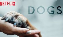 When Does Dogs Season 2 Start on Netflix? Release Date (Renewed)